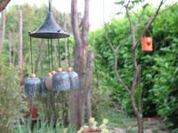 jardin-zen-et-pivoines-012-copie-reduite